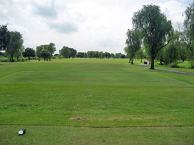 CLEARVIEW GC NO4-1