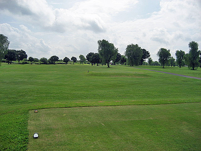 CLEARVIEW GC NO5-1