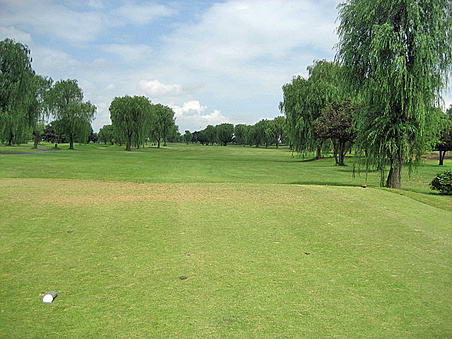 CLEARVIEW GC NO6-1