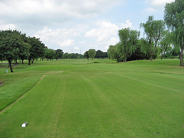 CLEARVIEW GC NO8-1