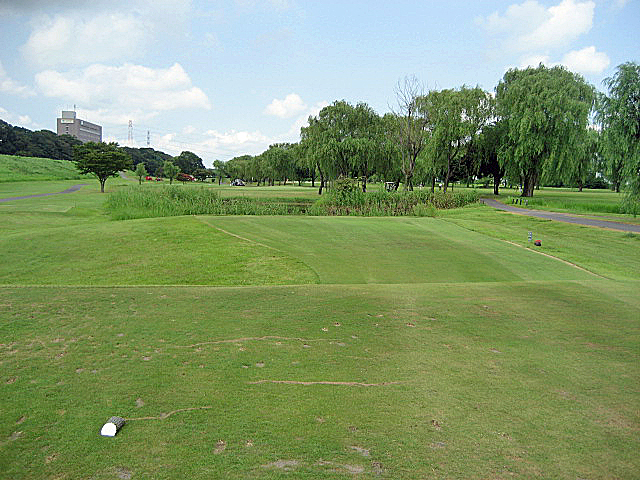 CLEARVIEW GC NO9-1